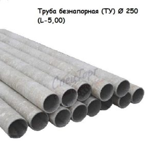Труба безнапорная (ТУ) Ø 250 (L-5,00)